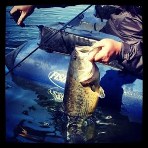bass fishing 7 different ways